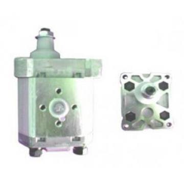 Atos Greece Korea PFG-1 fixed displacement pump