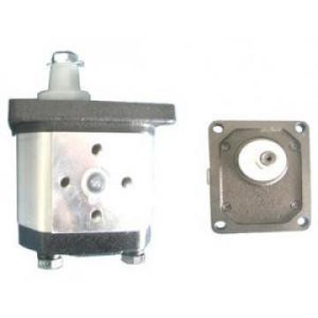 Atos African Egypt PFG-3 fixed displacement pump
