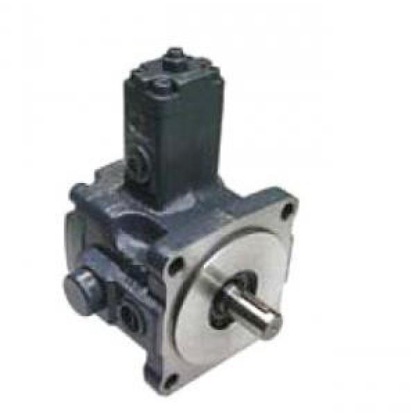 VPE-F40-D-10 Argentina Vane Pump #1 image