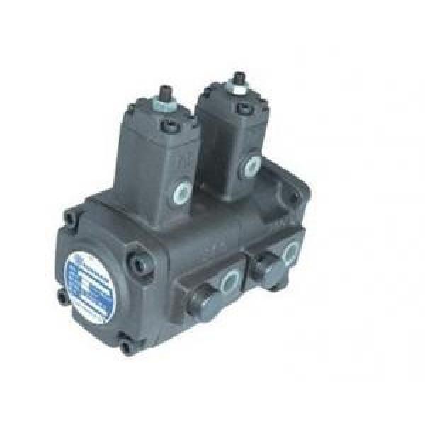 Double Moldova,Republicof variable vane pump VB1B1 Series #1 image
