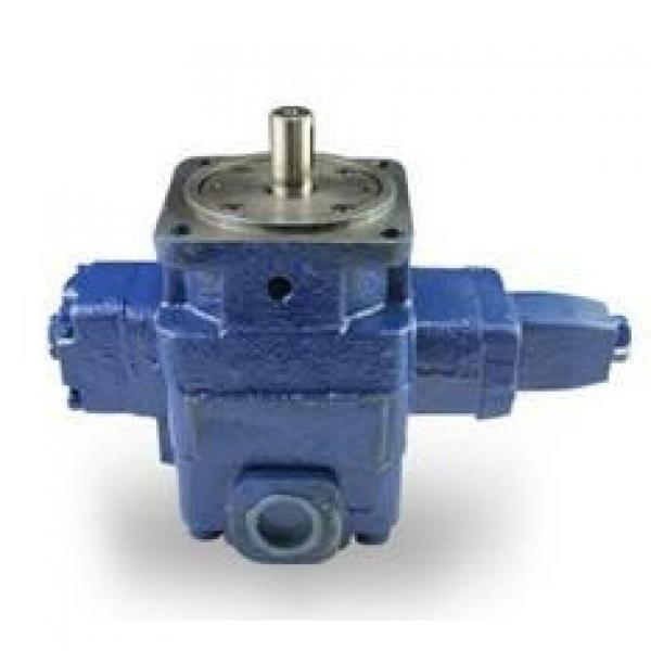 YBX Liechtenstein Series Limited Pressure Variable Vane Pump #1 image