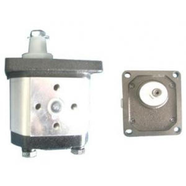 Atos African Egypt PFG-3 fixed displacement pump #1 image