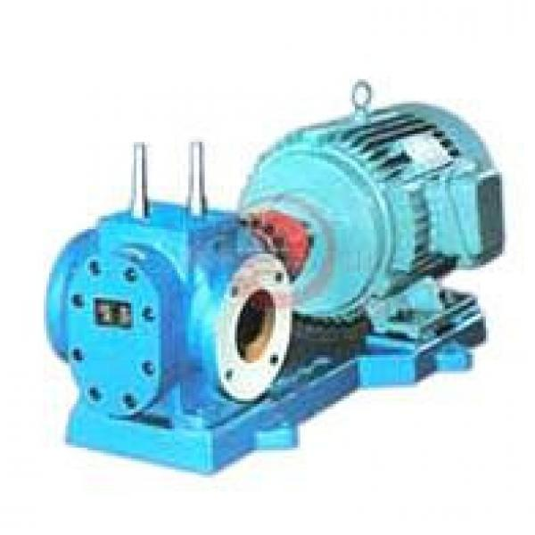 RCB Seychelles Mexico Series Insulation Gear Pumps #1 image