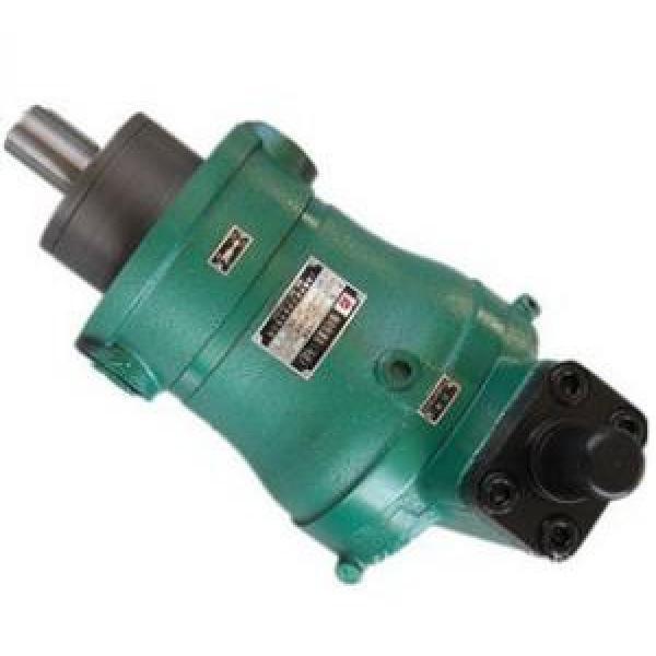 400YCY14-1B  high pressure piston pump #1 image