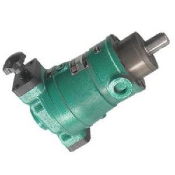 13SCY14-1B  axial plunger pump #1 image
