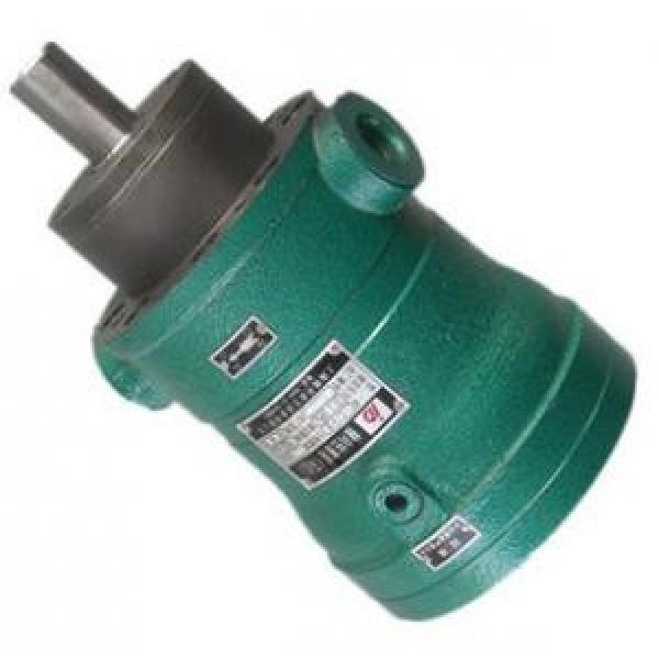 100MCY14-1B  fixed displacement piston pump #1 image