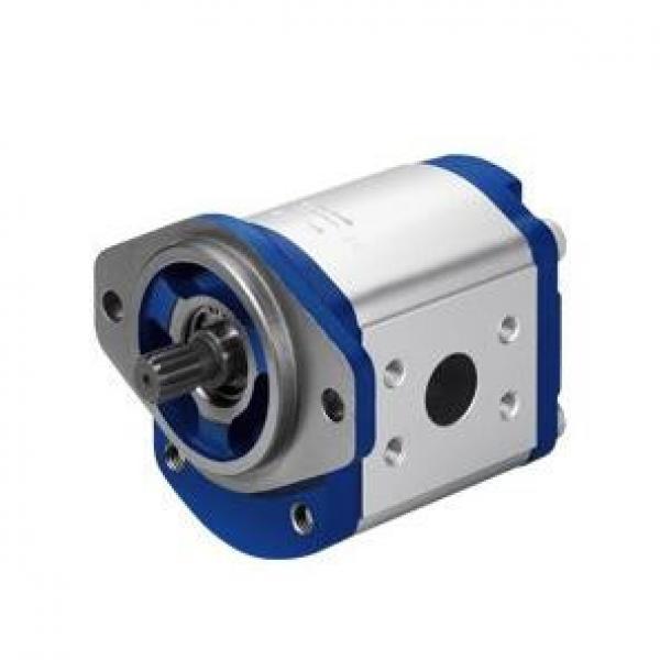 Parker Piston Pump 400481004292 PV180R1K1T1NSLZ+PVAC2MCM #1 image