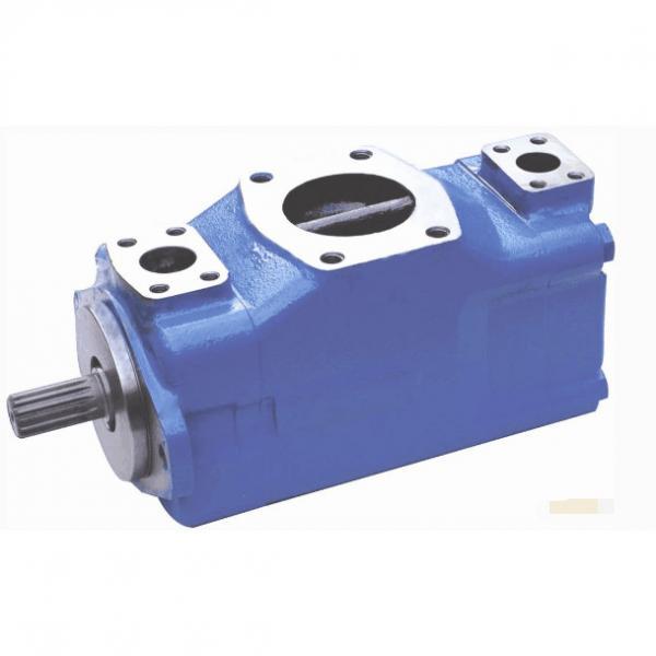 Vickers Swaziland vane pump 45V-60A-86A-22R #1 image