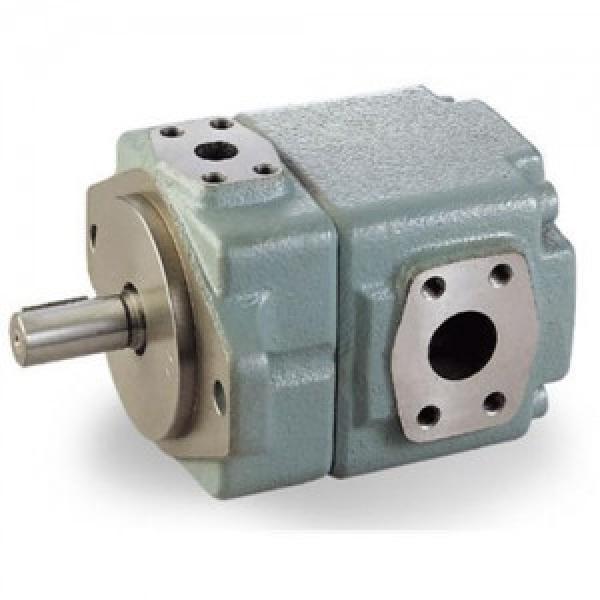 T6CC Quantitative vane pump T6CC-017-012-1R00-C100 #1 image