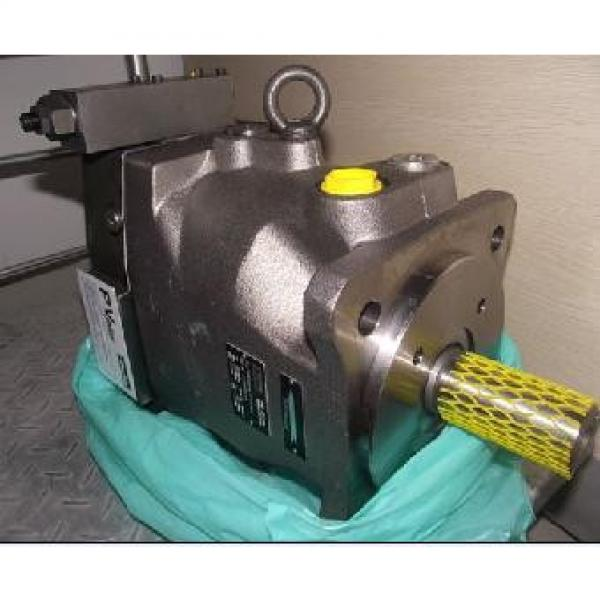 Parker  Plunger PV series pump PV29-2L1D-L02 #1 image