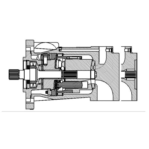 Dansion Yugoslavia P080 series pump P080-02R1C-R20-00 #1 image