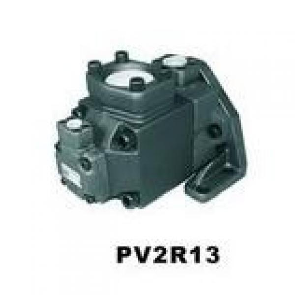 Parker Piston Pump 400481004465 PV270R1K1T1NUPP + PVACPP #1 image