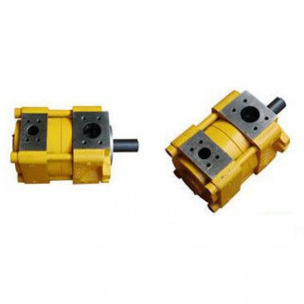 Sumitomo QT51-100F-A Sumitomo QT Series Gear Pump #1 image