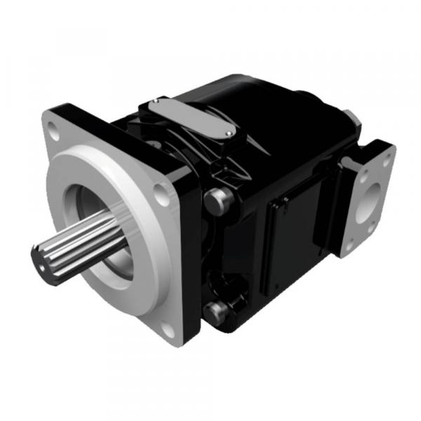 PV20-2L1D-J00 Imported original Original P series Dension Piston pump #1 image