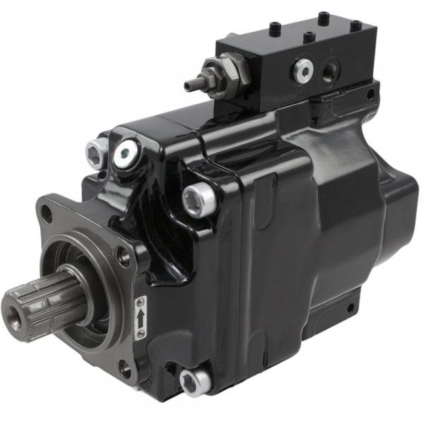 SDV2020 1F13S11S 11AB Imported original Original SDV series Dension Vane pump #1 image