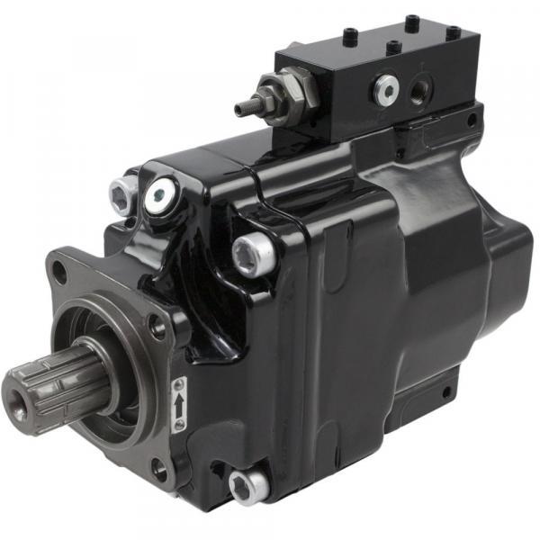 T6CLP 025 5R02 B1 pump Imported original Original T6 series Dension Vane #1 image