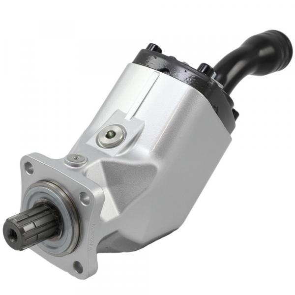 T6C0101R02B5 pump Imported original Original T6 series Dension Vane #1 image