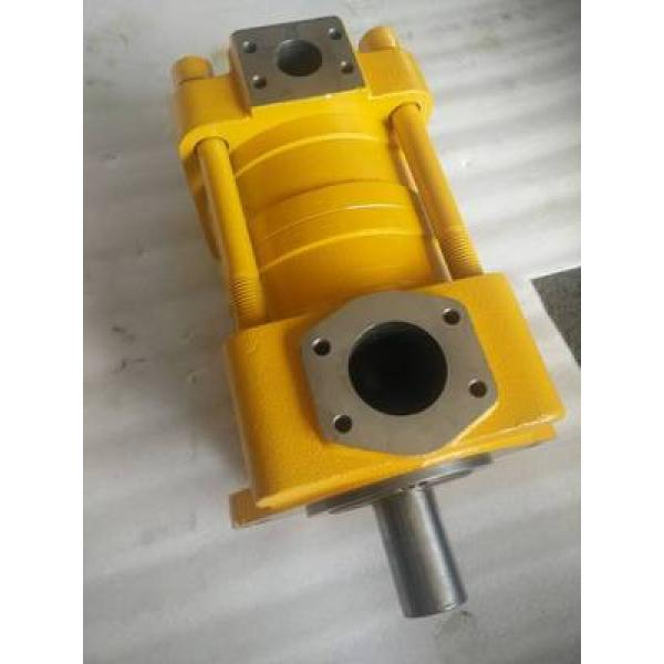 QT62-125E-A Imported original SUMITOMO QT62 Series Gear Pump #1 image