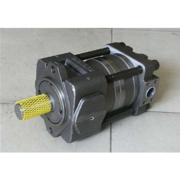 QT53-50E-A Imported original  SUMITOMO QT53 Series Gear Pump #1 image
