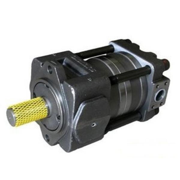 QT52-40-A Imported original  SUMITOMO QT52 Series Gear Pump #1 image