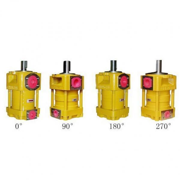 QT52-40F-A Imported original  SUMITOMO QT52 Series Gear Pump #1 image