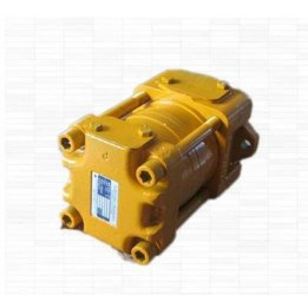 QT52-40L-A Imported original  SUMITOMO QT52 Series Gear Pump #1 image