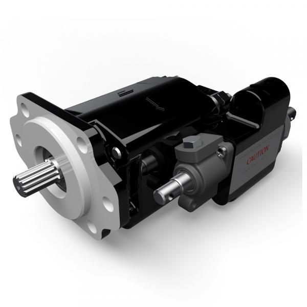 T6ED-052-045-1R00-C100 pump Imported original Original T6 series Dension Vane #1 image